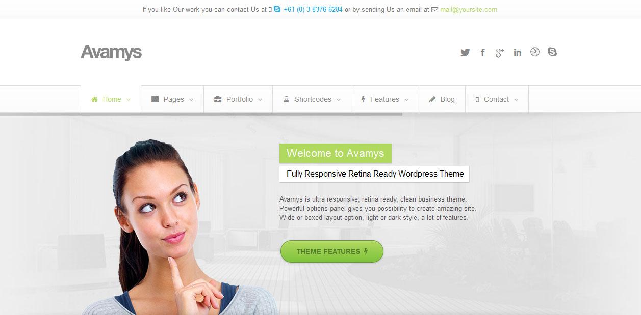 Avamys - Retina Display Ready WordPress Themes