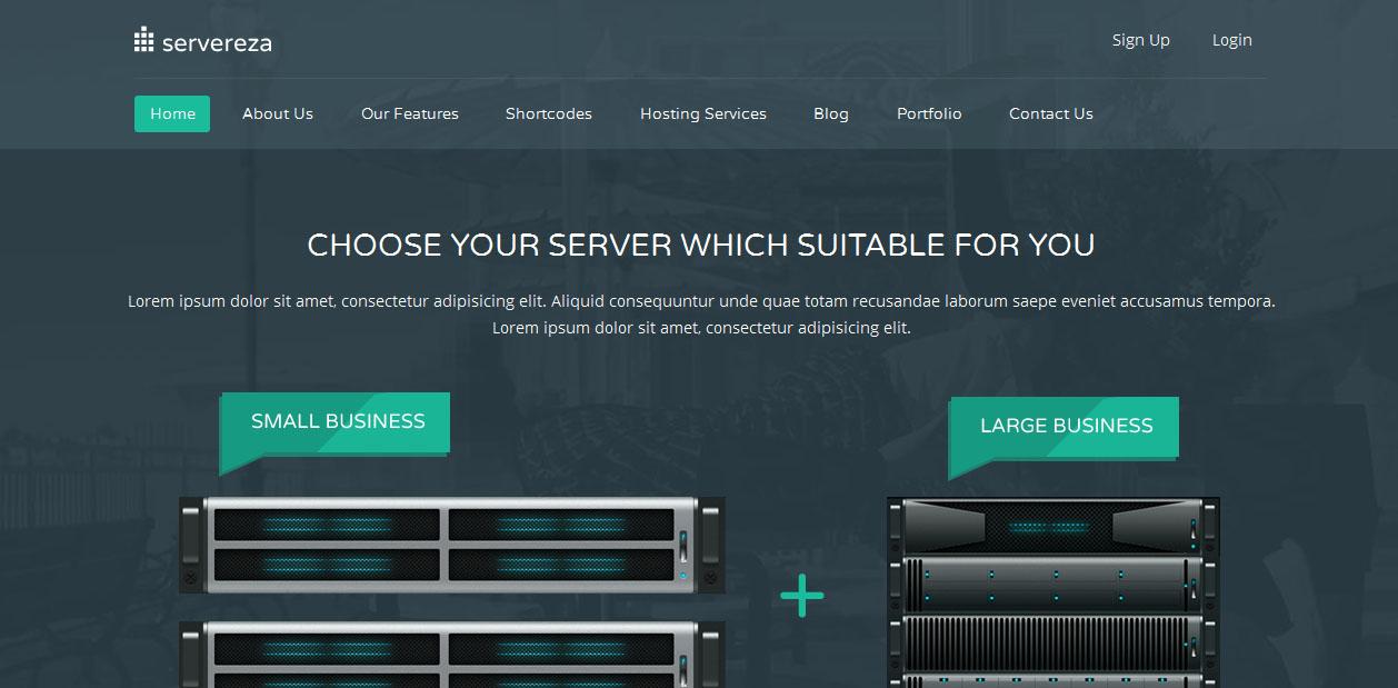 Servereza - Hosting WordPress Themes