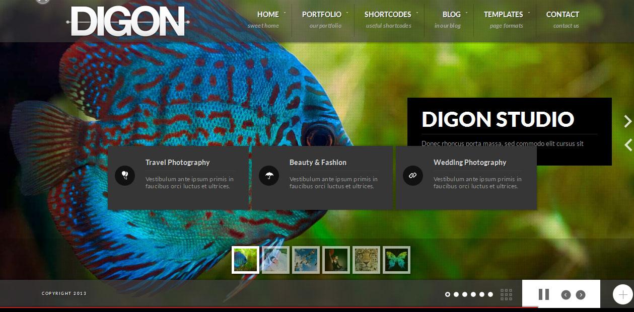 Digon