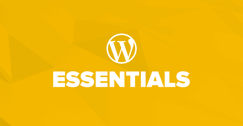 The Essential Guide to WordPress Theme Customization