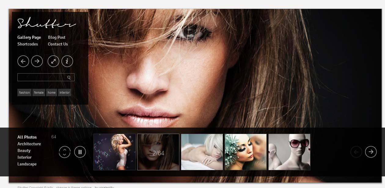 Shutter - WordPress Photography Themes