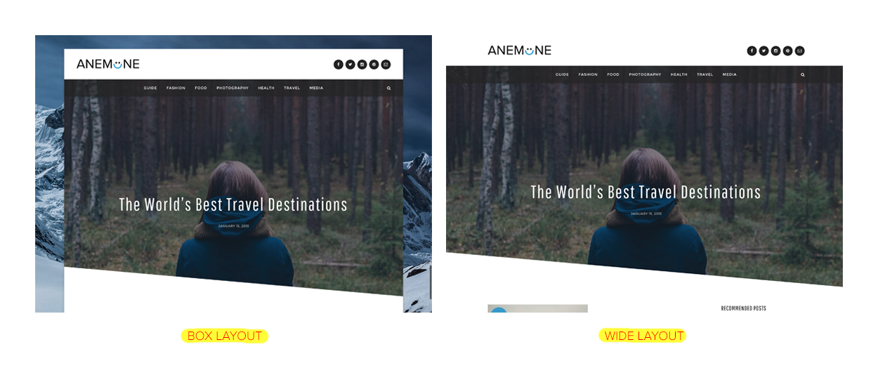 wide-vs-box-layout-anemone-wordpress-theme
