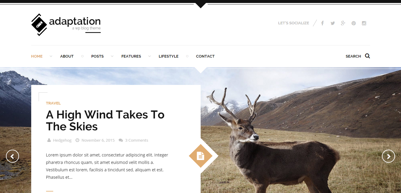 Adaptation - Responsive Blog Theme for WordPress