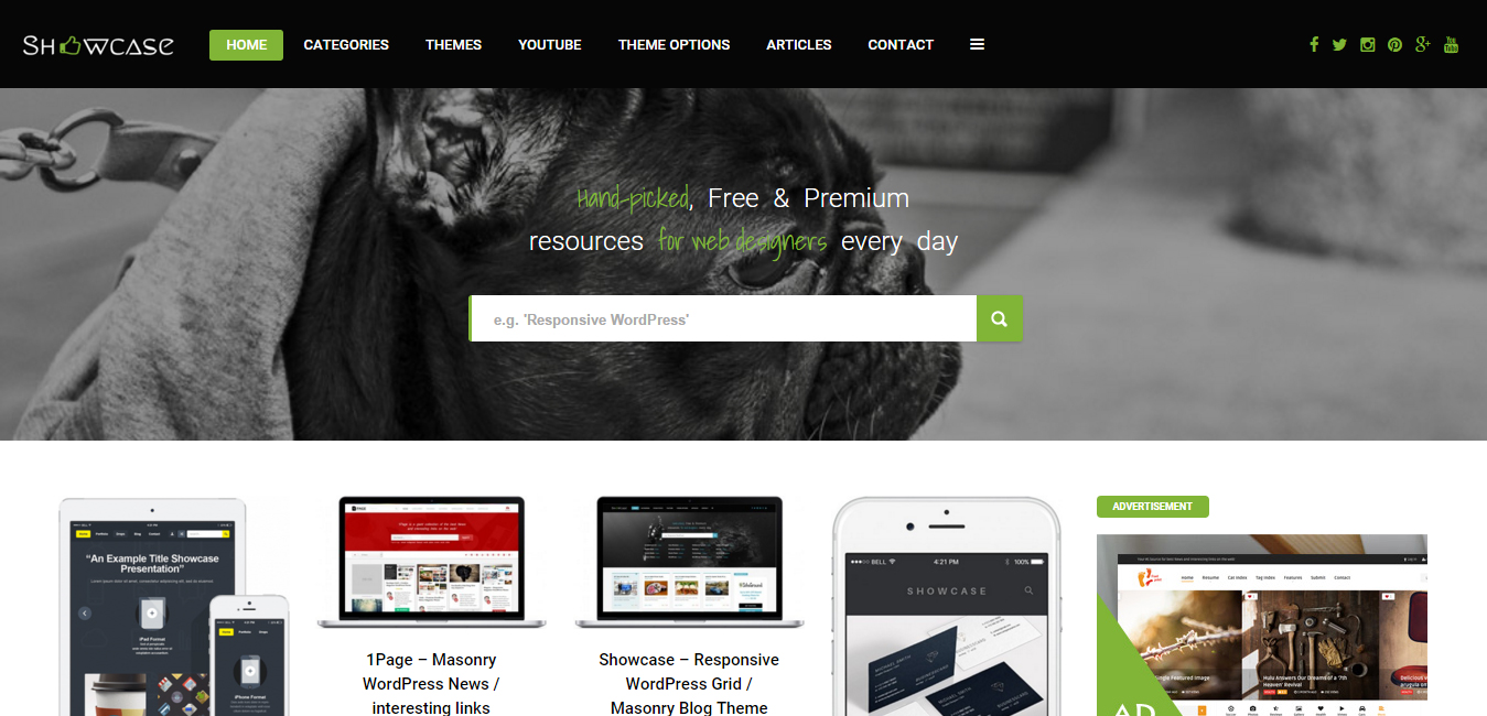 Showcase - Responsive WordPress Masonry Blog Theme