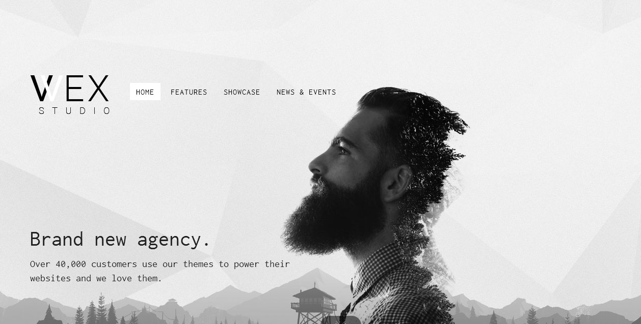 WEX - Minimalist Themes for WordPress