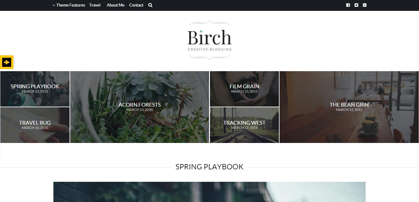 Birch - Responsive WordPress Personal Blog Theme