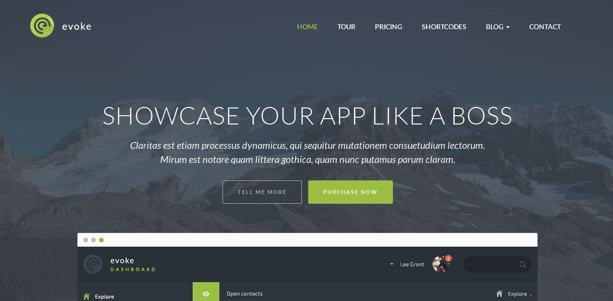 Evoke Software WordPress Themes