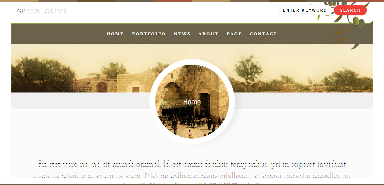 Green Olive Stylish Blog and Portfolio WordPress Theme