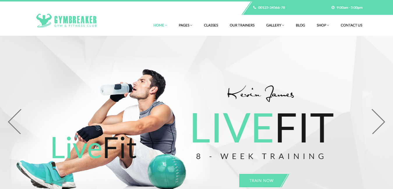Gym Breaker Fitness & Gym WordPress Theme