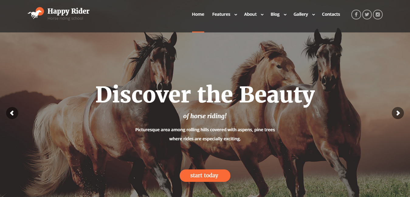 best equestrian websites