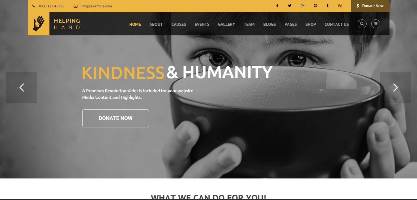 HelpingHand - Charity WordPress Themes