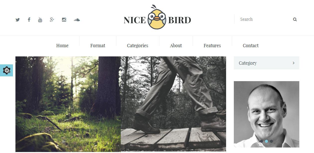 NiceBird
