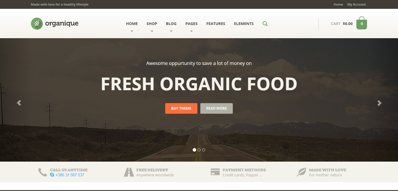 Organique - Healthy Food Shop WordPress Theme