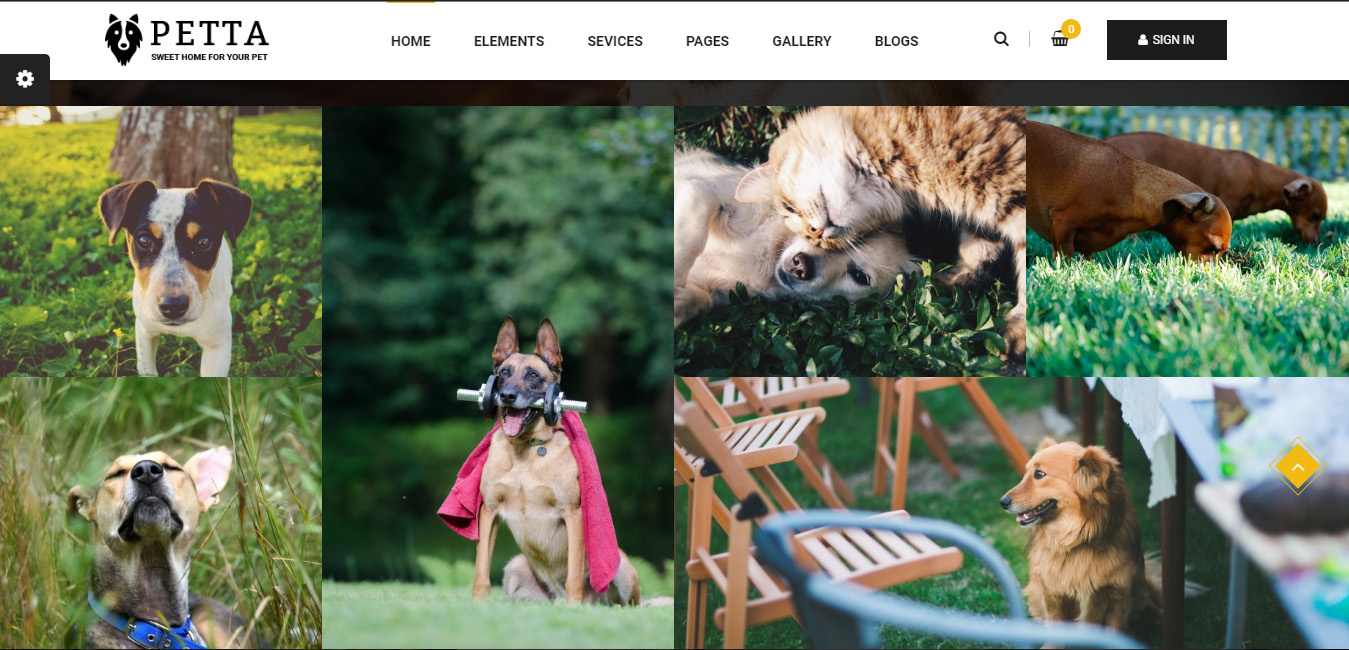 Petta - Pet Care WordPress Theme
