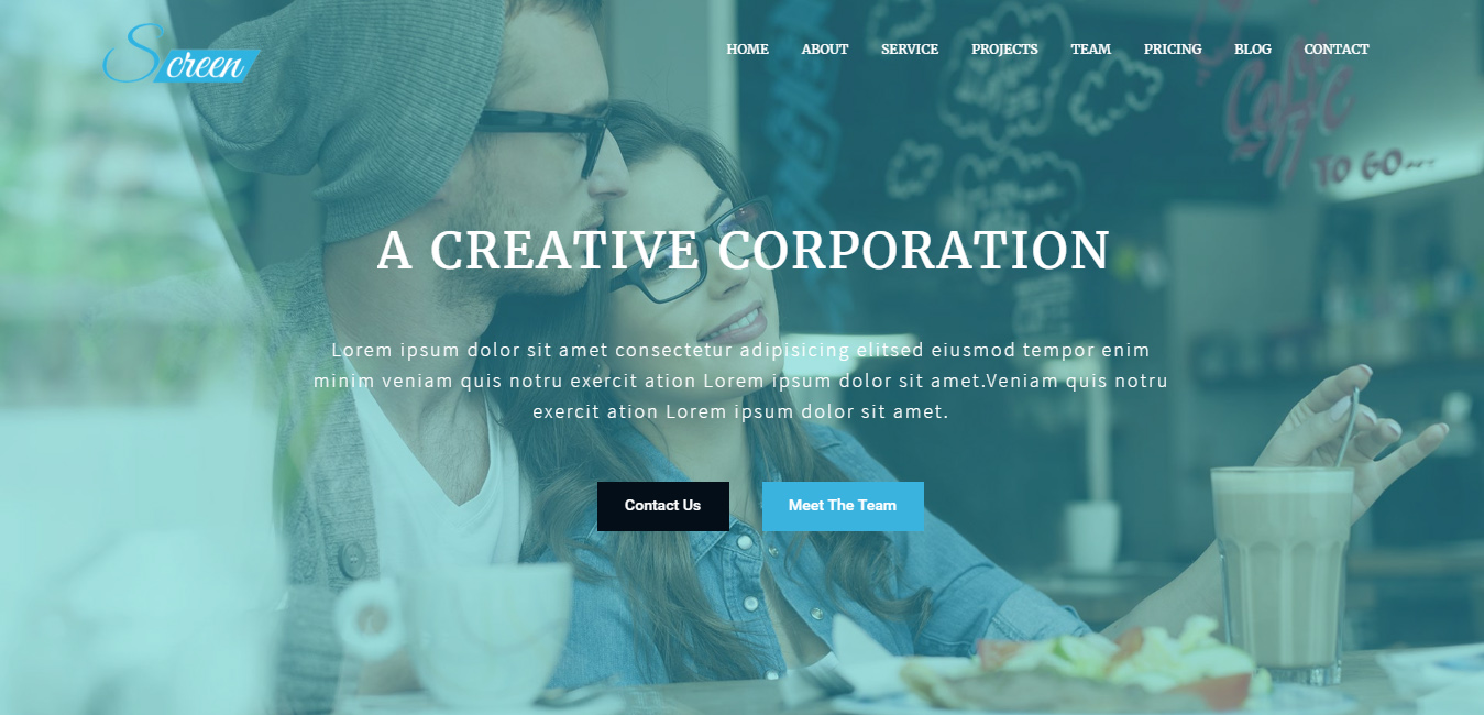 Screen - One Page Business WordPress Theme