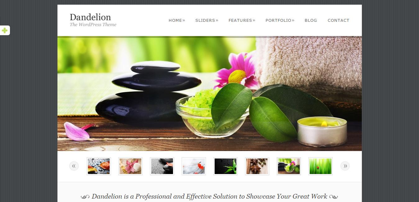 Dandelion - Elegant WordPress Theme