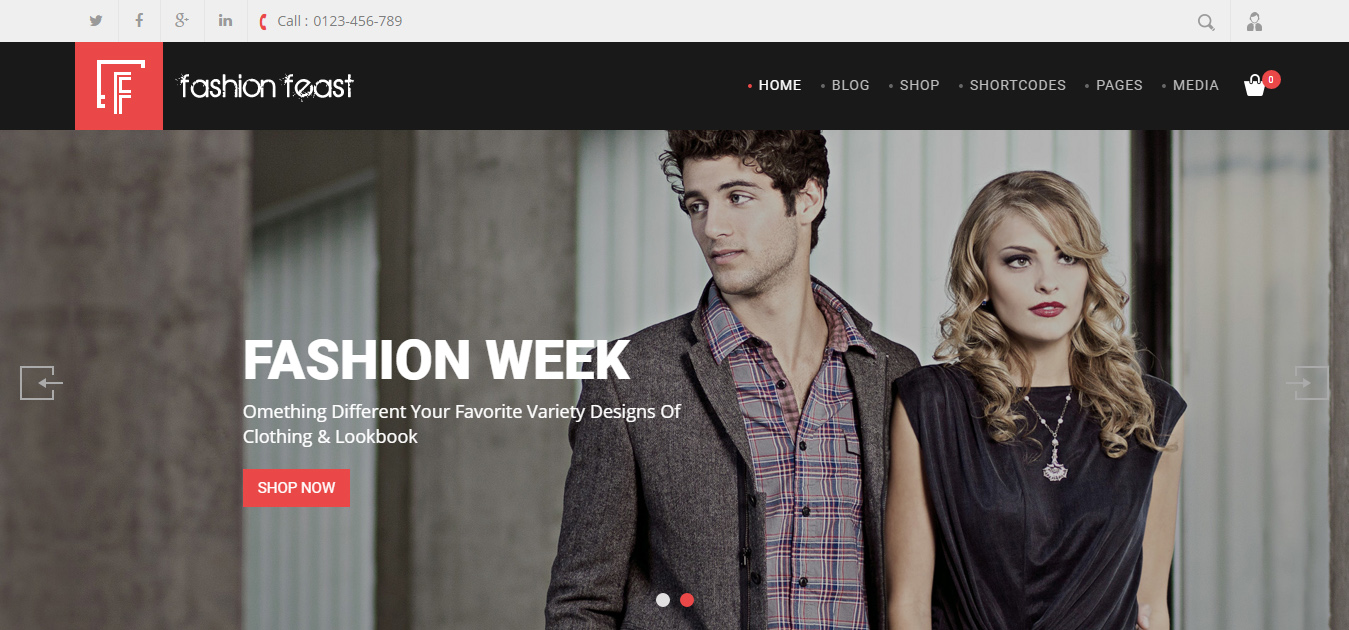 Fashion Feast - Beauty Store WordPress Themes