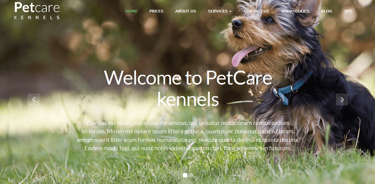 PetCare Dog - Dog WordPress Themes