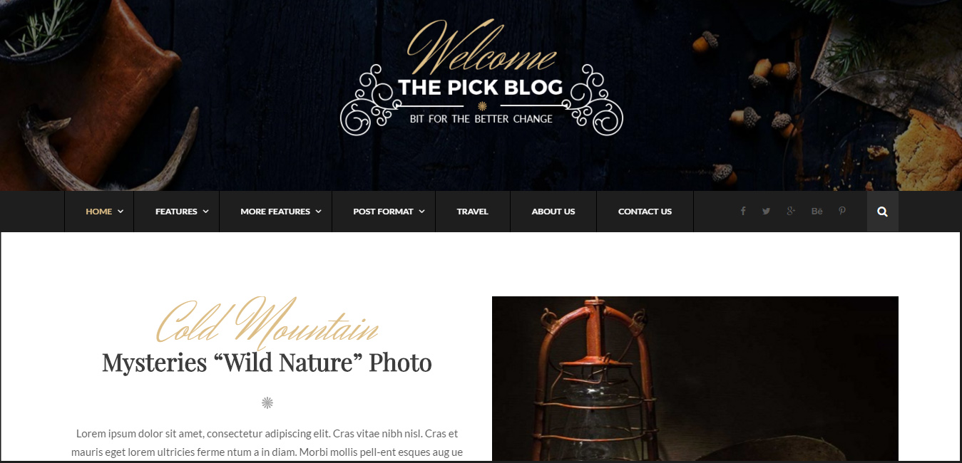 Pick - Responsive WordPress Blog Theme