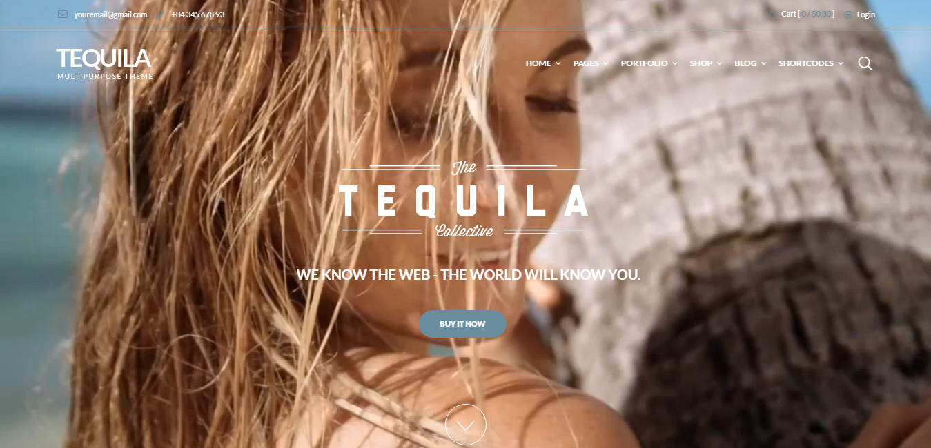 Tequila - watch shop WordPress themes
