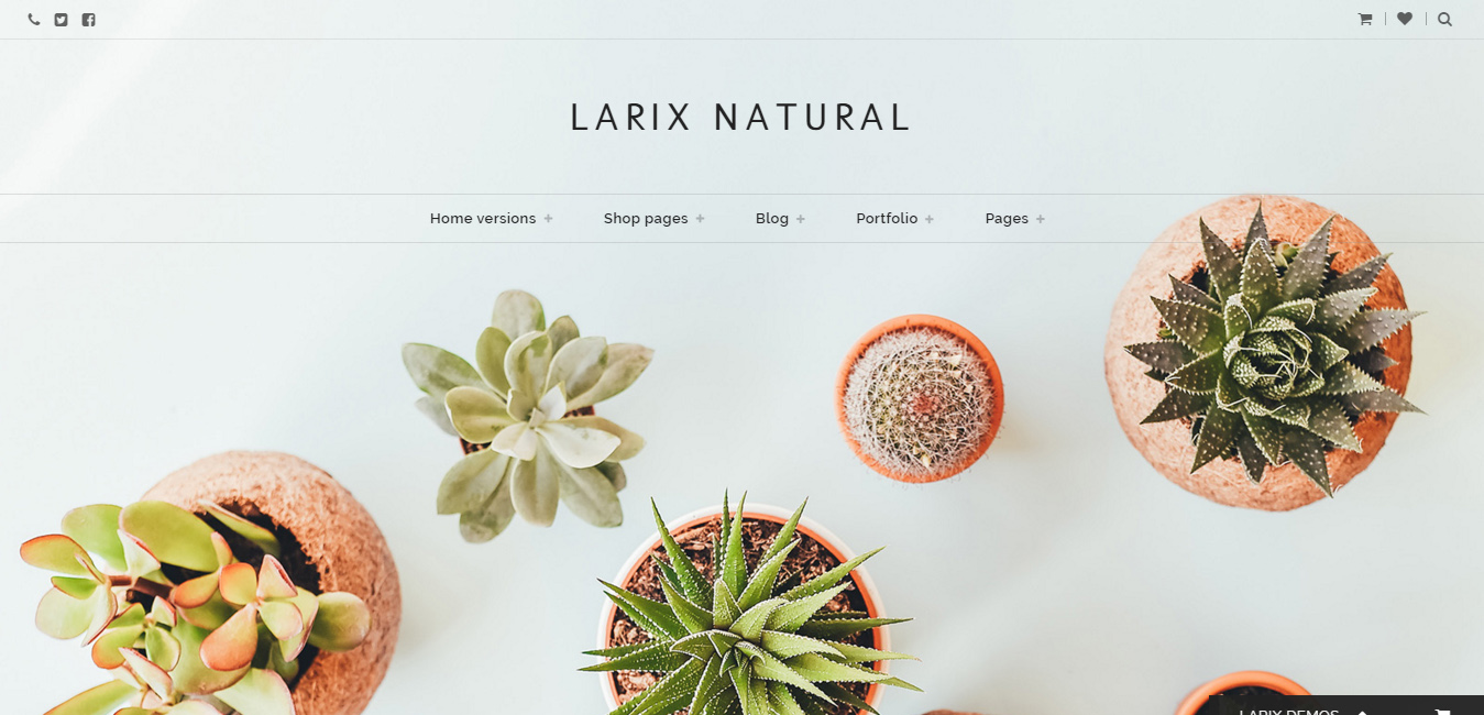 Larix - Creative Multipurpose WP Theme