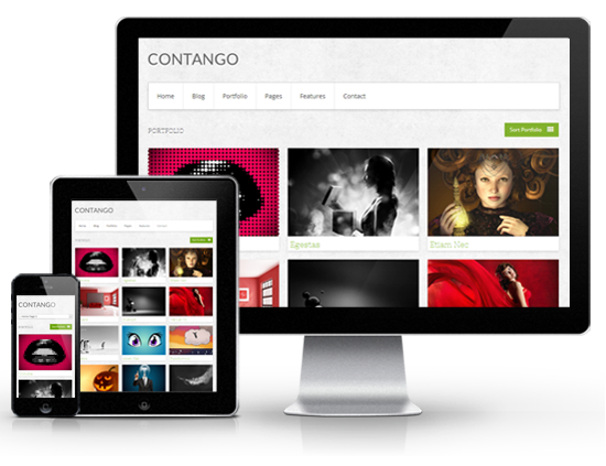 Contango Responsive WordPress Theme