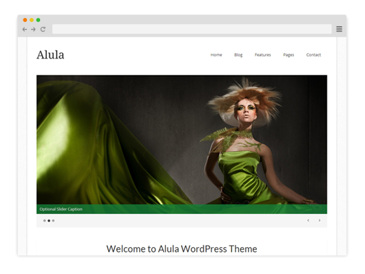 Alula-Premium-WordPress-Theme
